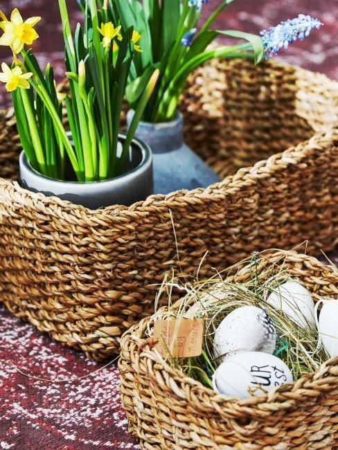 maceta de flores narcisos y huevos de pascua