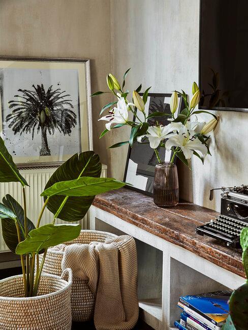 plantas de interior con mueble de madera natural