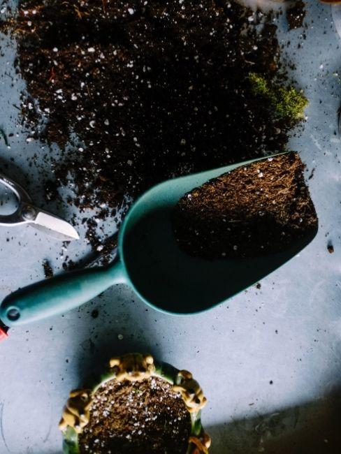 Pala azul con abono de plantas