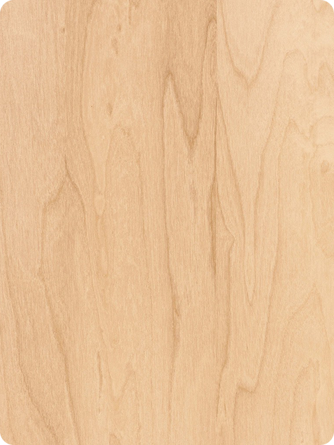 textura madera abedul