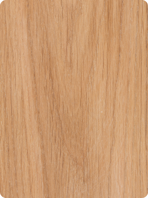 textura madera haya
