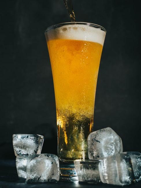 Vaso high con cerveza fresquita