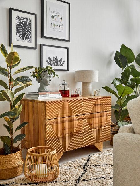 mueble de madera cuadros y plantas