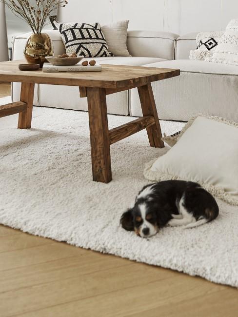 Mesa de centro de madera y un perrito