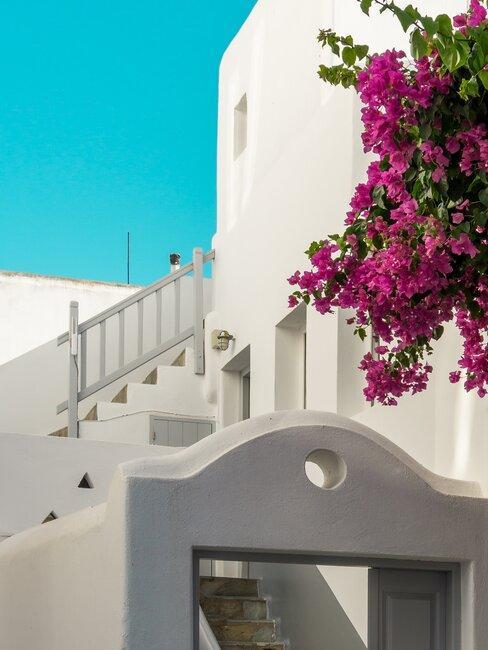 entrada con escaleras casa ibicenca con flores