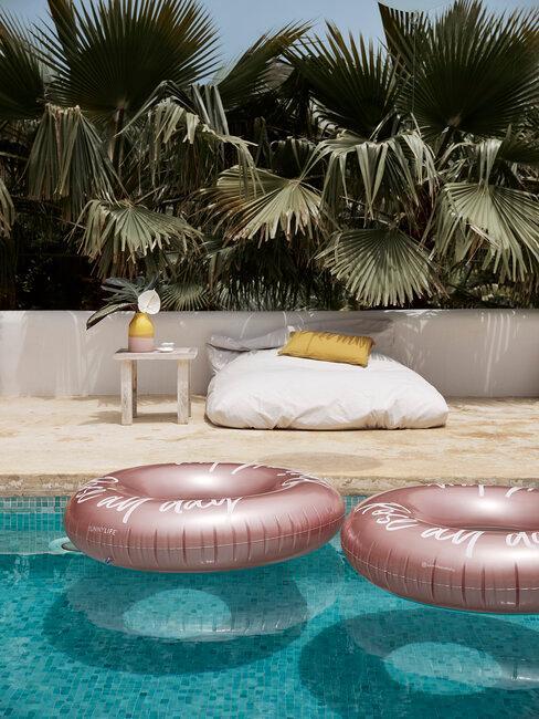 flotadores, piscina y palmeras
