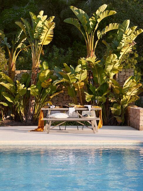 piscina-mesa y banco y plantas