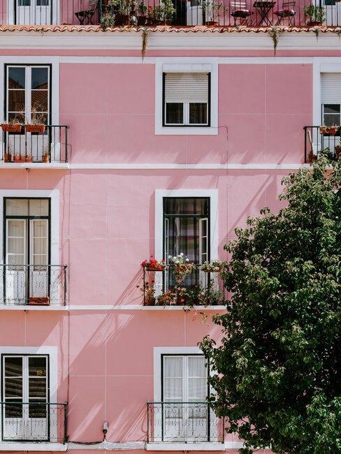 Edificio rosa con plantas