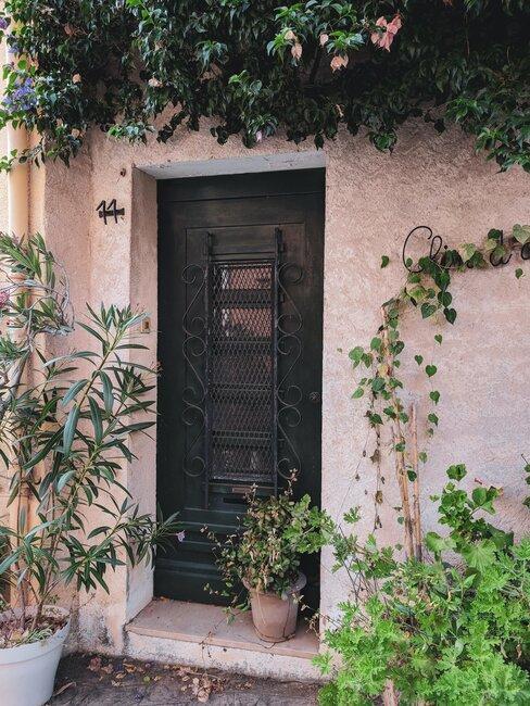 puerta de hierro rústica