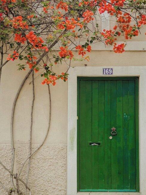 puerta rústica verde