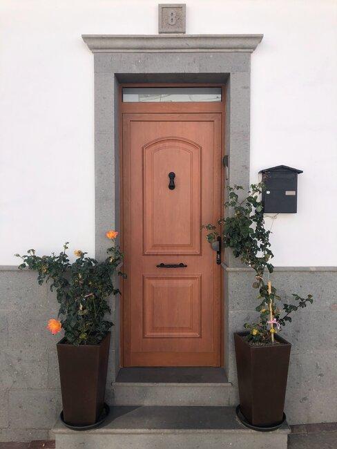 puerta de entrada de madera con plantas