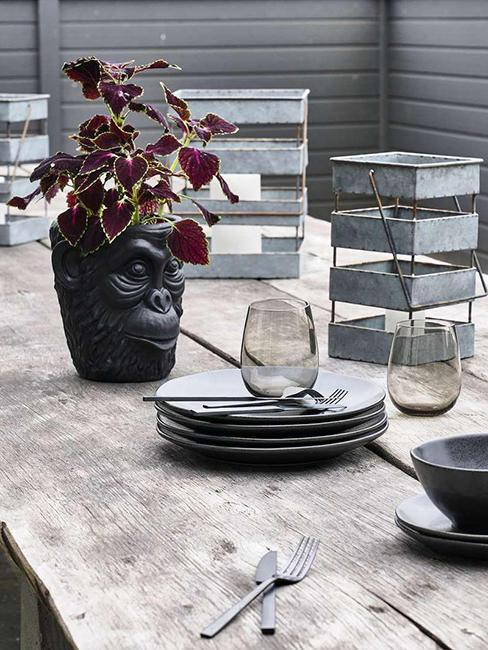 cache pot noir singe sur table