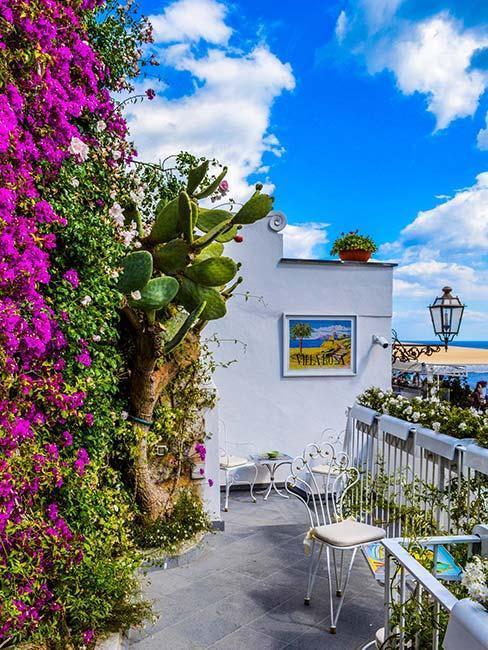 balcon au bord de la mer avec fleurs violettes