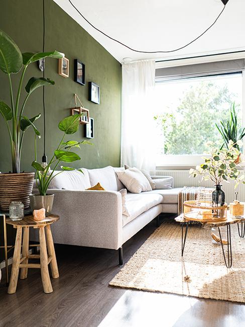 salon avec peinture du mur en vert, canapé beige et tabouret en bois avec plante verte