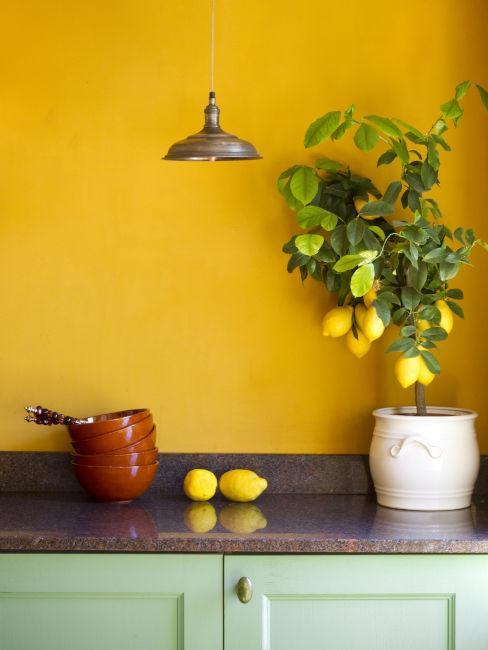 couleur mur cuisine jaune