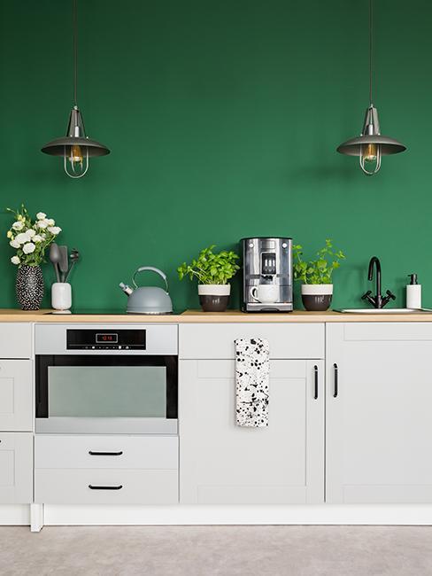 cuisine avec mur vert