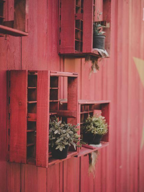 mur en bois avec caisses rouges accrochées au mur pour faire un étagère avec des plantes