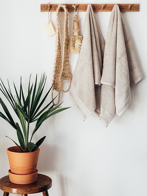 serviettes suspendues à un porte manteau et une plante verte