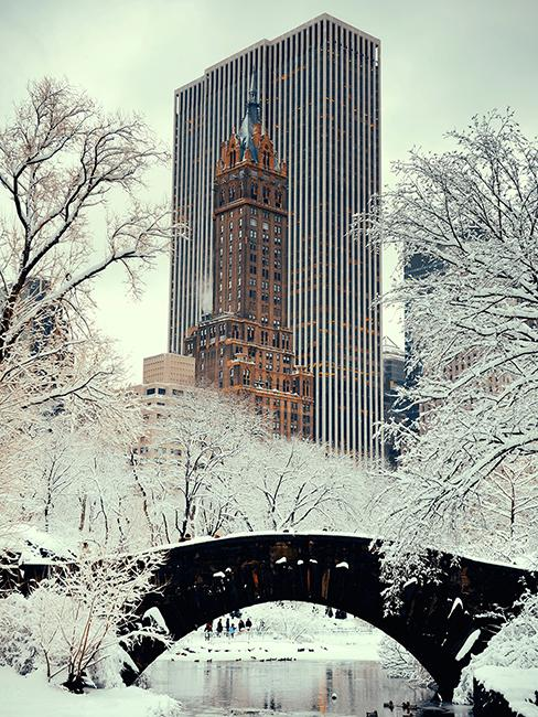 Central Parc New York enneigé