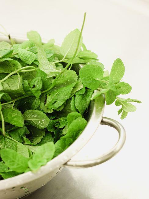 Bol avec des feuilles d'herbes aromatiques