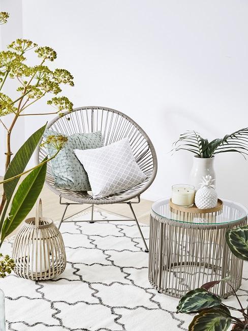 Acapulco gris sur tapis crème entouré de plantes vertes