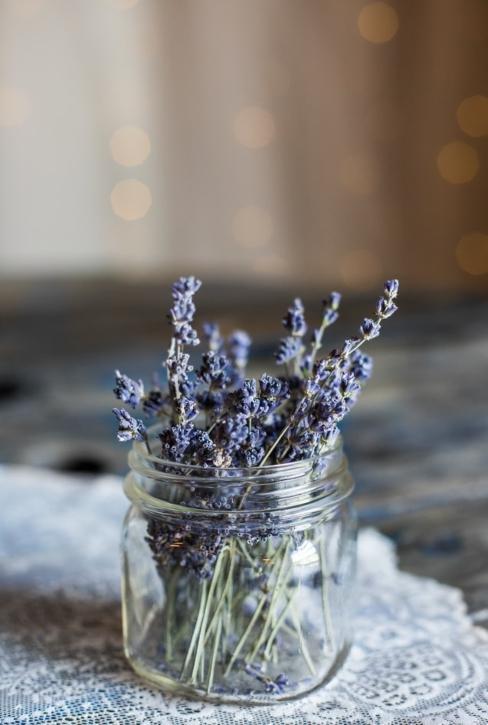 Fleurs de lavande séchées dans un bocal transparent