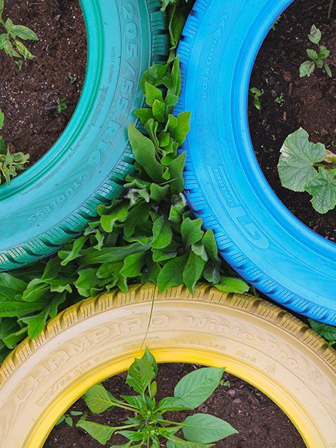déco de jardin de recup avec pneus repeints et transformés en jardinière