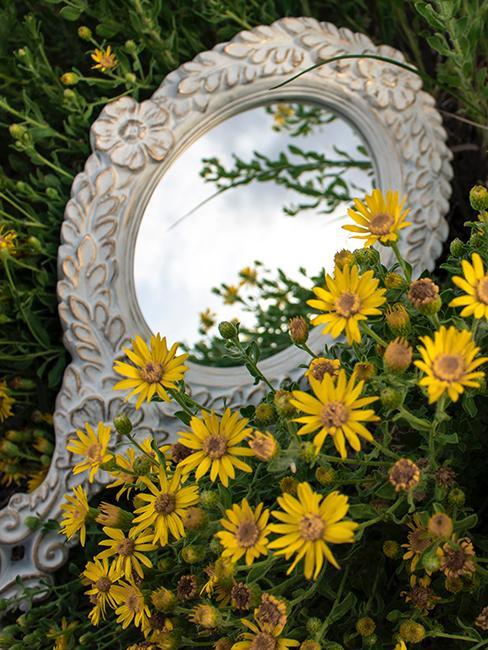 miroir jardin