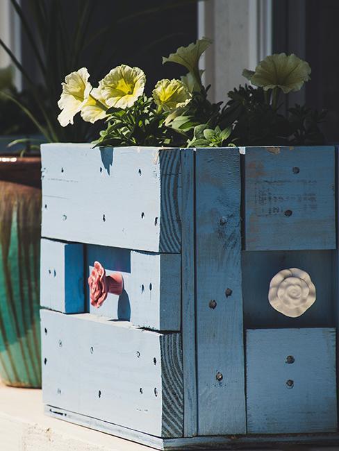 caisse en bois bleue transformée en jardinière