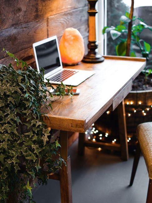idée home office avec plantes