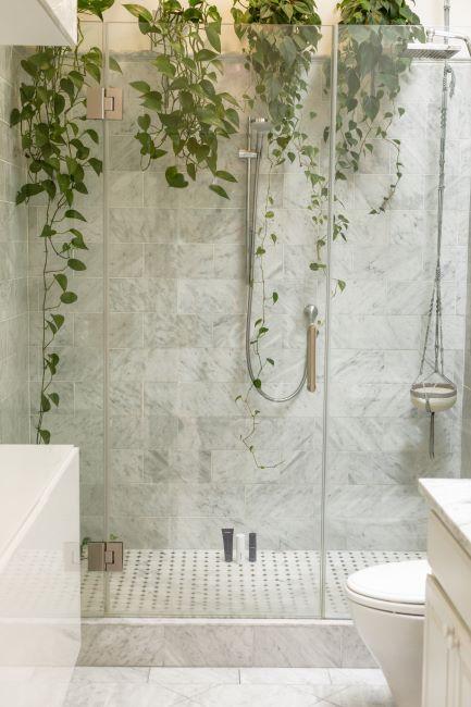 baignoire et douche italienne, salle de bain blanche avec vegetaux