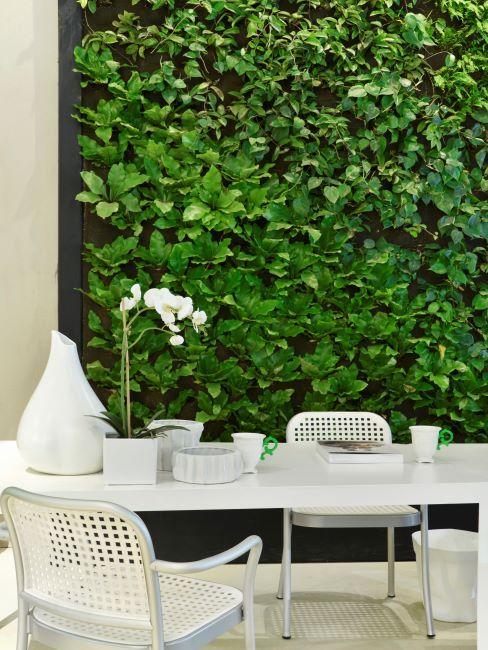 Mobilier de jardin blanc devant un mur végétal