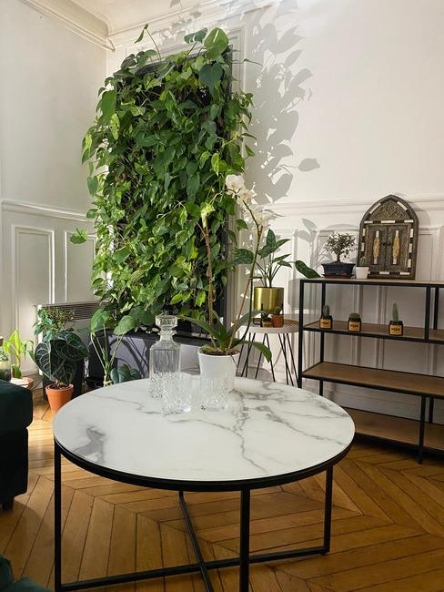 Salon et coin vert de leopask bloggeur