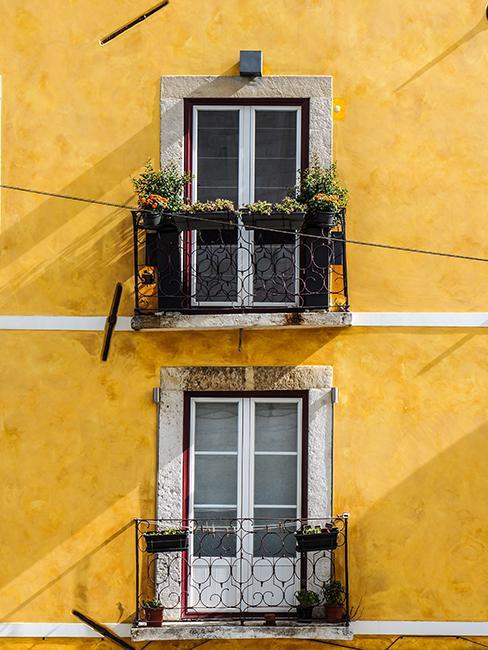petit balcon avec plante et façade jaune