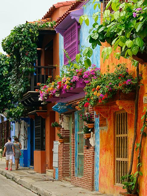 maisons colorées avec des balcons fleuris