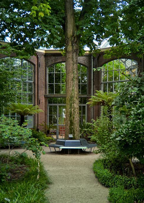 banc de jardin autour d'un arbre