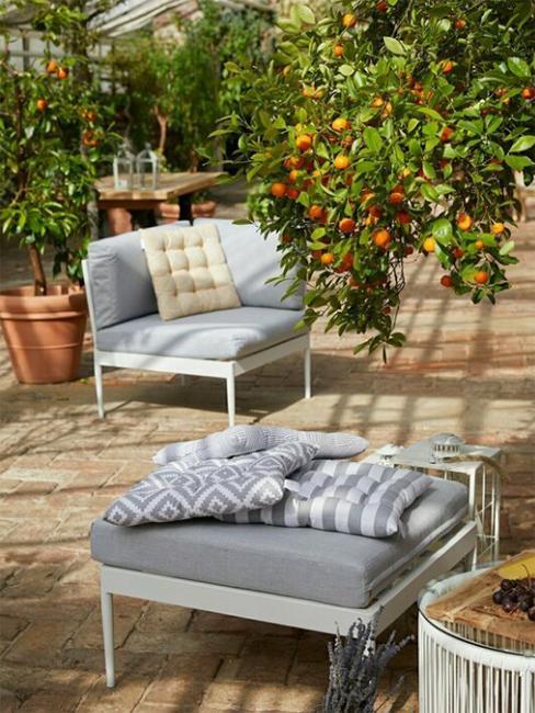 jardin d'hiver avec orange et repose pied gris