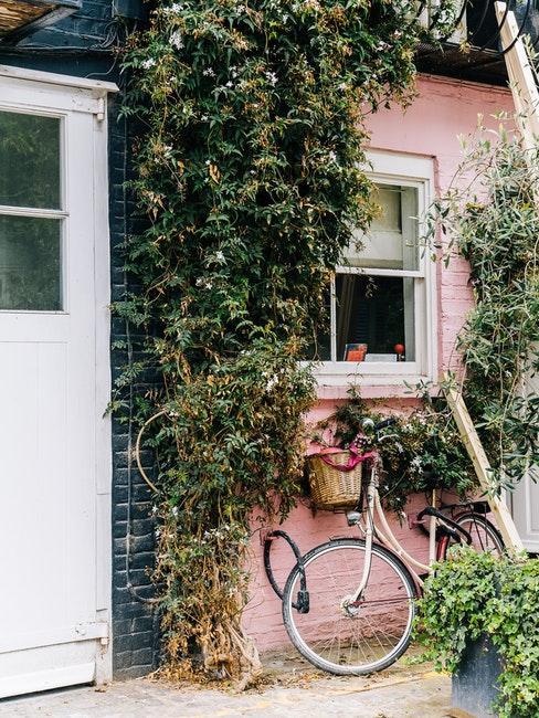 Maison a facade rose et vert, porte blanche et plante grimpante