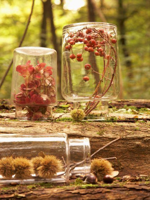 Trois bocaux en verre decores de fleurs d'automne sechees
