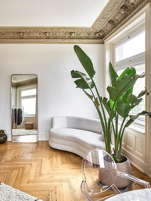 salon avec canapé courbé, plante verte, miroir doré et moulure dorée