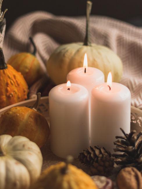 3 bougies blanches au milieu de citrouilles d'halloween