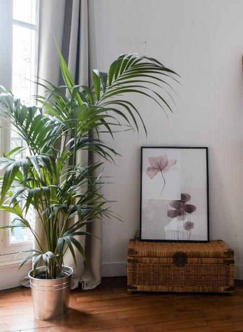 malle en osier dans appartement trendy de Dressingleeloo