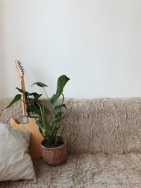 Canapé effet poil avec plante et guitare