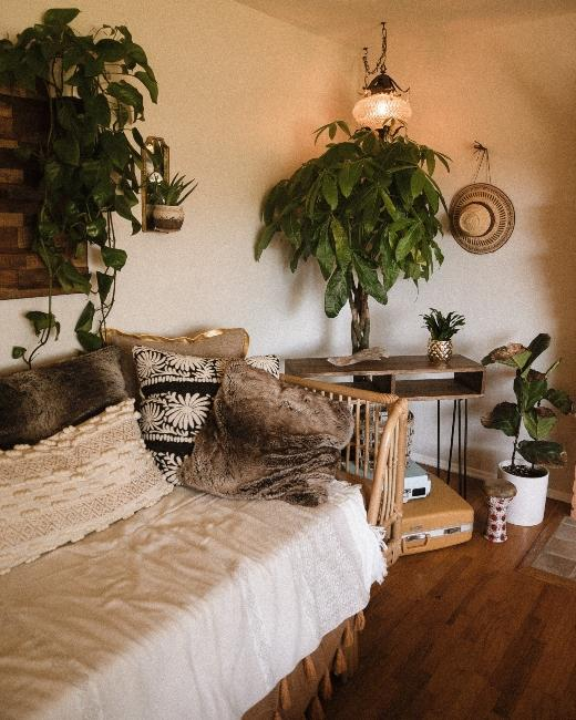 salon boho avec plante et canapé en rotin