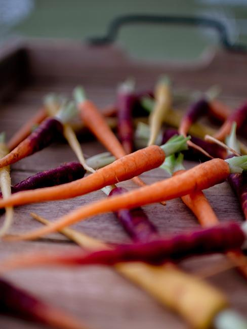 Carottes fines oranges et violettes