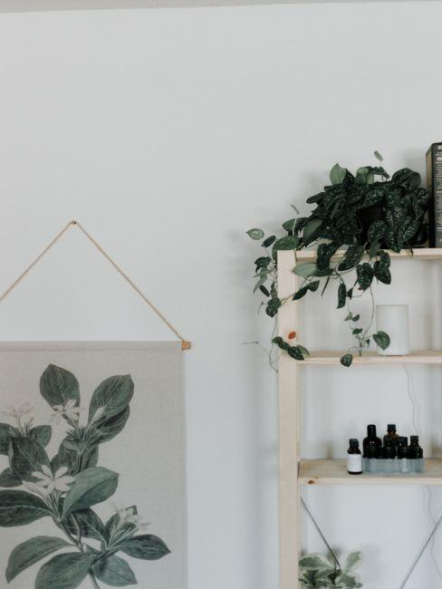 étagère en bois clair avec plusieurs flacons d'huiles essentielles, plante verte et affiche d'inspiration botanique