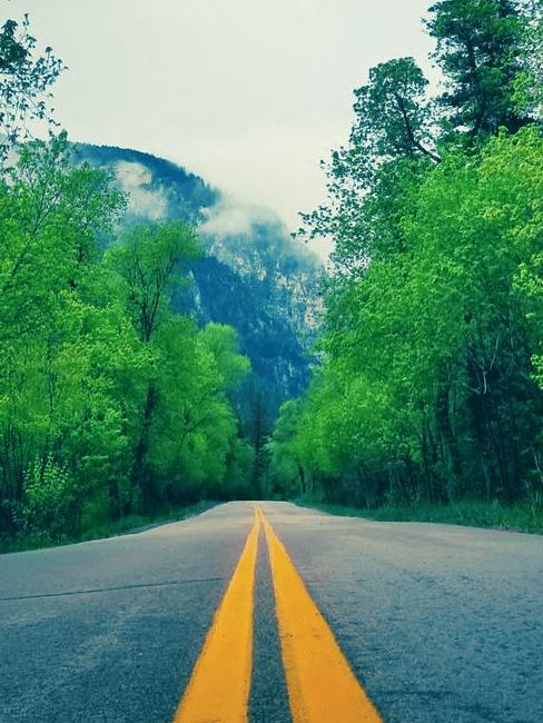 mobilité durable sur la route