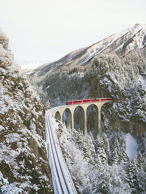 Train sur un viaduc en suisse
