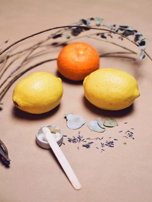 deux citrons, une clémentine et quelques tiges de fleurs séchées