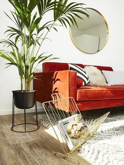 canapé de salon en velours orange, porte-revues doré, miroir mural rond et plante verte